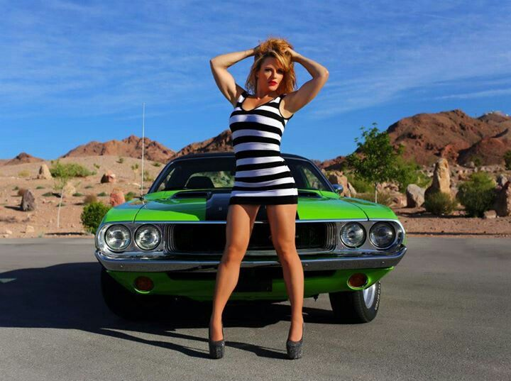 Dodge Challenger Image 1970 Dodge Challenger Las Vegas