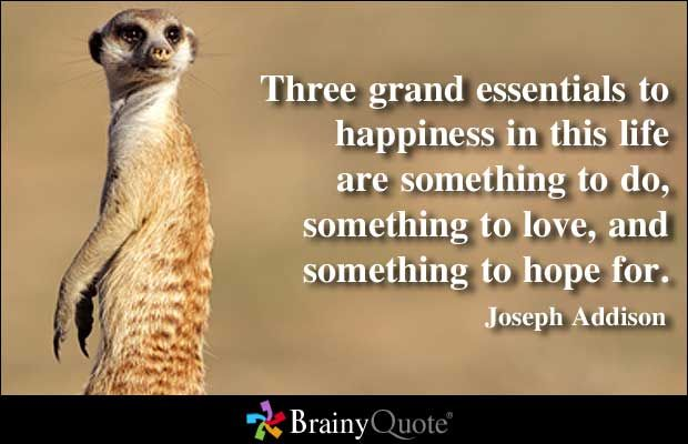 Three grand essentials to happiness in this life are something to do ...