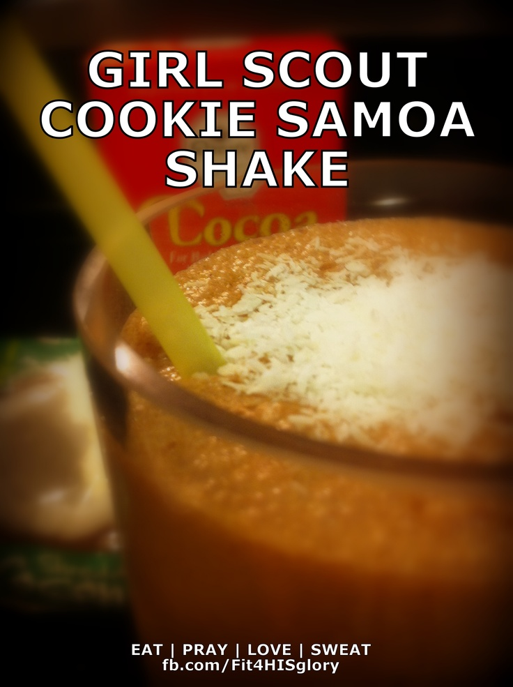 scout thin mints style cookie s day 4 gingerbread cookie protein shake ...