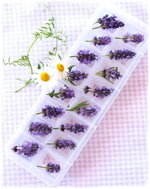 Lavender ice cubes, but instead of whole, use smaller buds.