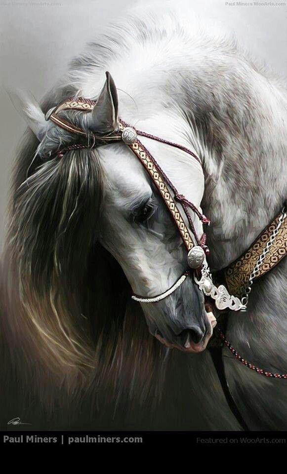 Beautiful white horse paintings - photo#1