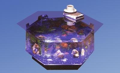 Octagon Coffee Table Aquarium