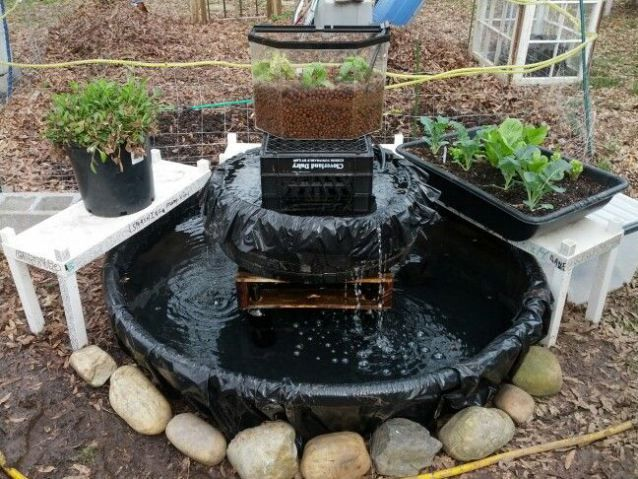 Aquaponics grow bed liner waters sistem for Homemade pond liner