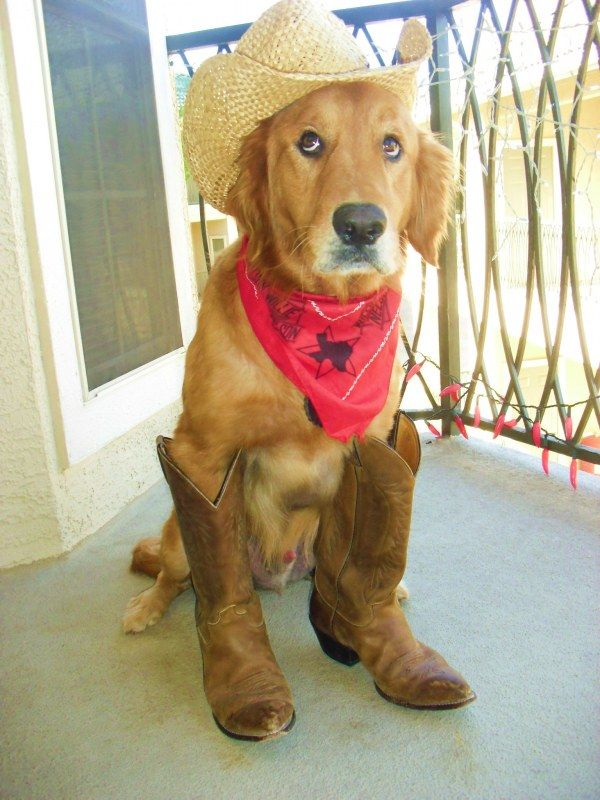 photo I Just Tried on the Best Cowboy Boots, and Theyre Surprisingly Easy to Style