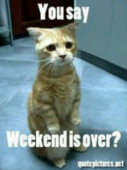 The weekend.is over | ...