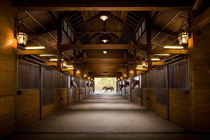 Horse Barn | horses | Pinterest