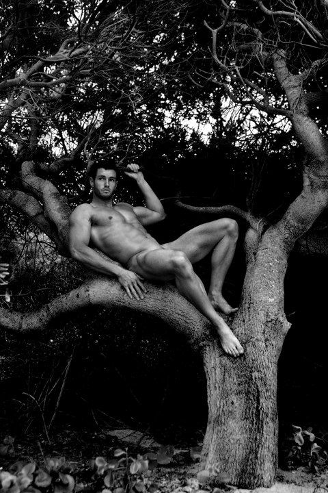 Nude man in trees