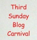 Third Sunday Blog Carnival: Poetry, Fiction, and Thoughts on the Writing Life