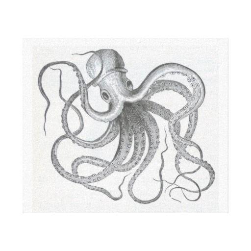 Drawing Lines In Jcanvas : Nautical steampunk octopus vintage kraken drawing