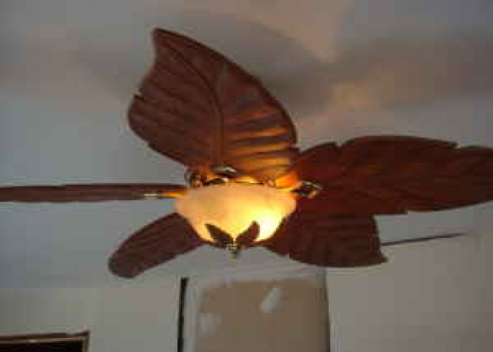 Pin by rockin613 on prepare to be boarded pinterest - Leaf blade ceiling fan with light ...