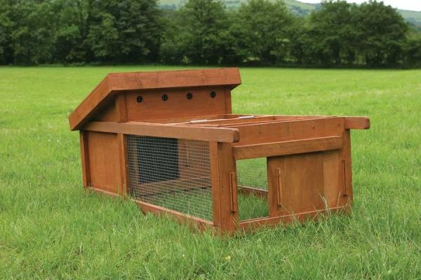 Portable Chicken Coop In The Garden Pinterest