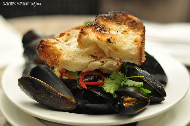 Coconut Curry Mussels at WA Frost & Co | From the Sea | Pinterest
