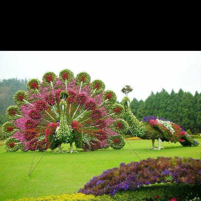 Old Cypress Gardens Fl Florida Pinterest