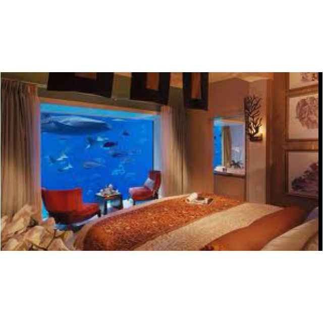 Awesome Aquarium Bedroom