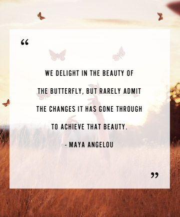 """""""We delight in the beauty of the butterfly, but rarely admit the changes it has gone through to achieve that beauty"""" Maya Angelou"""