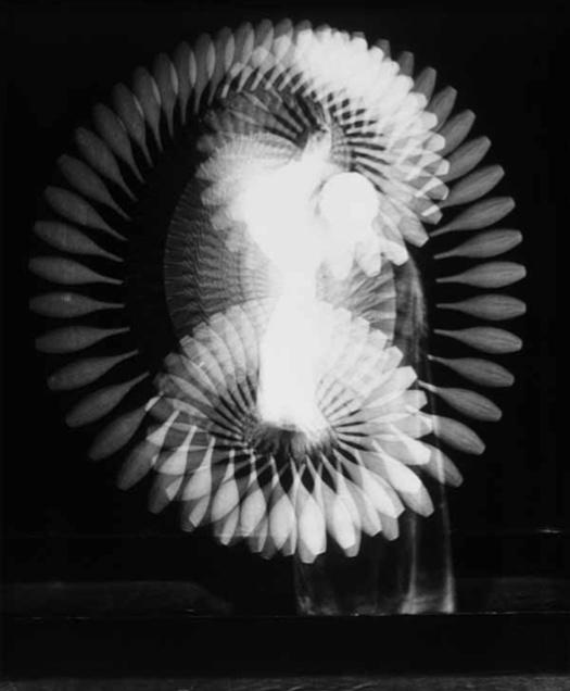 Harold Edgerton: The Anatomy of Movement