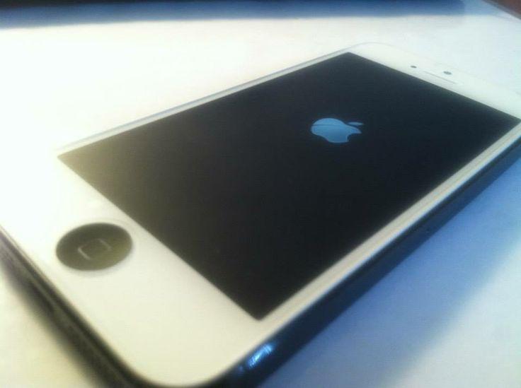 iphone 5 c apple