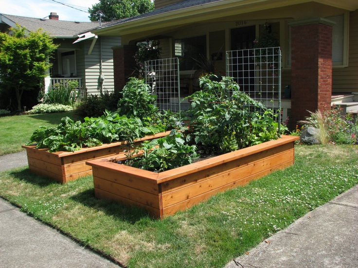 Landscaping front yard garden bed ideas for Front garden bed ideas