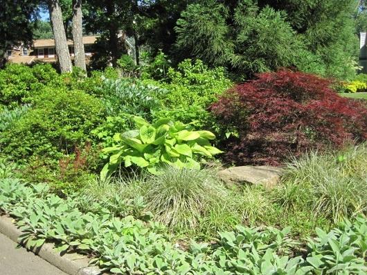 Shade with partial sun my garden shade garden pinterest for Part shade garden designs