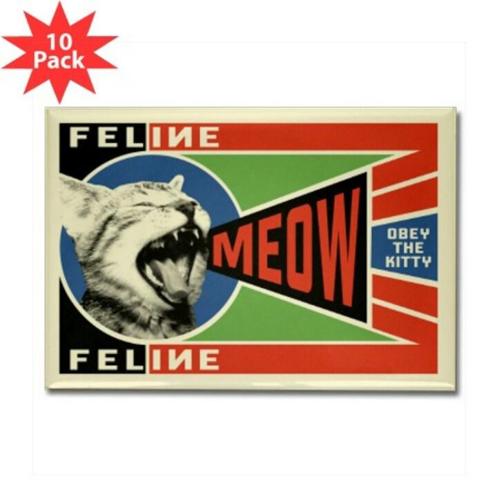 Obey the kitty | Cat & pet stuff | Pinterest