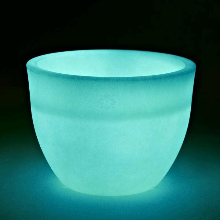 plant pot glow in the dark staff pinterest