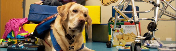 Trigger's Toys! He's one of our favorite volunteers :) Learn more @ http://triggerstoys.org/