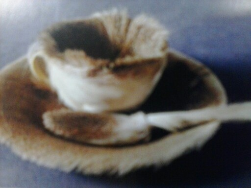 Object  also known as luncheon in fur  by merry oppenheim  He was    Object Luncheon In Fur