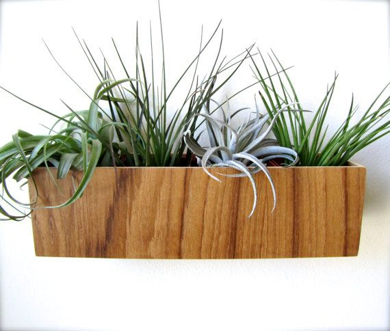 Wall Planter 10 Hanging Planter Plant Holder In