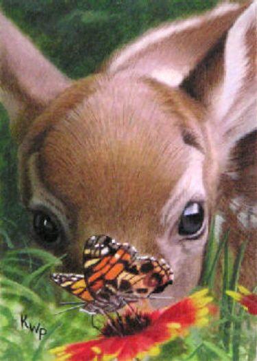 bambi at the picnic