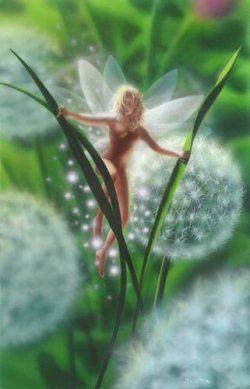 Dandelion Faerie