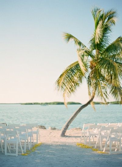 A palm tree at the end of the aisle. #beach #wedding