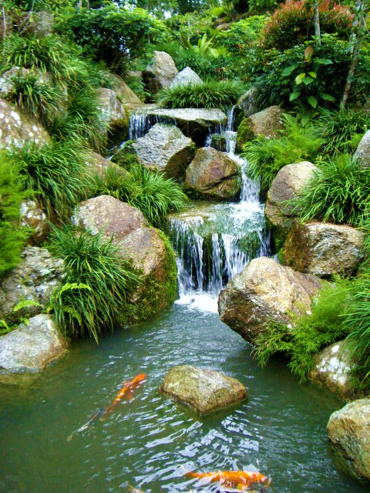Koi falls tranquil landscapes pinterest for Backyard waterfall pond