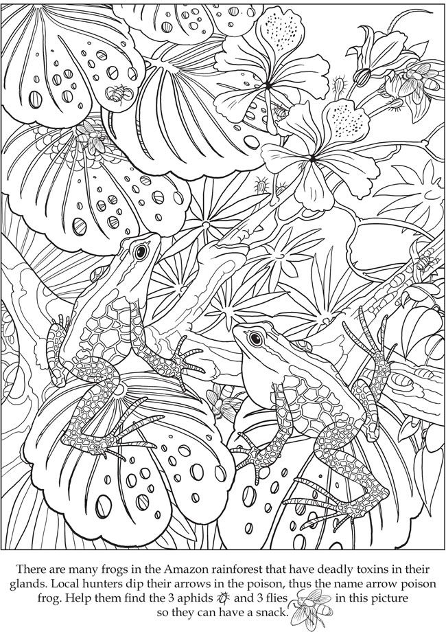 free hidden coloring pages - photo#31