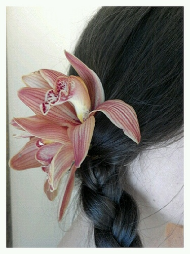 Fresh Orchid Hair Pieces 96
