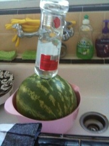 Vodka infused watermelon hahaha raphell  taught me about this but I thought I'd pin it anyways