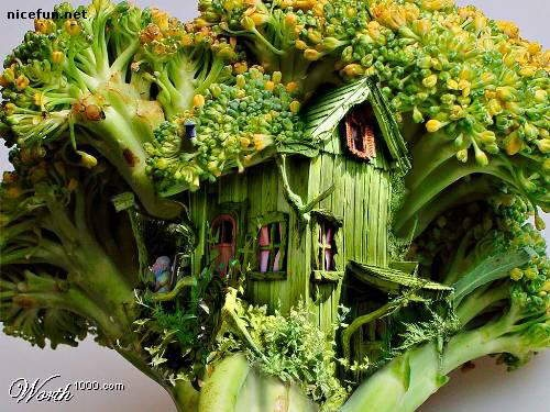 Broccoli tree house lol color pinterest for Colorful tree house