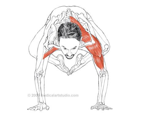 Yoga Workout: Crane Pose Stability Workout advise