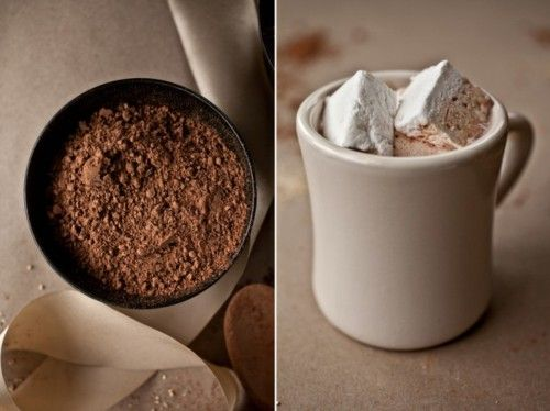 Maple Hot Cocoa http://notwithoutsalt.com/2011/12/16/maple-hot-cocoa/