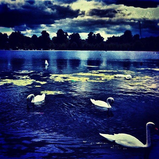 Hyde Park blue fantasy lake.