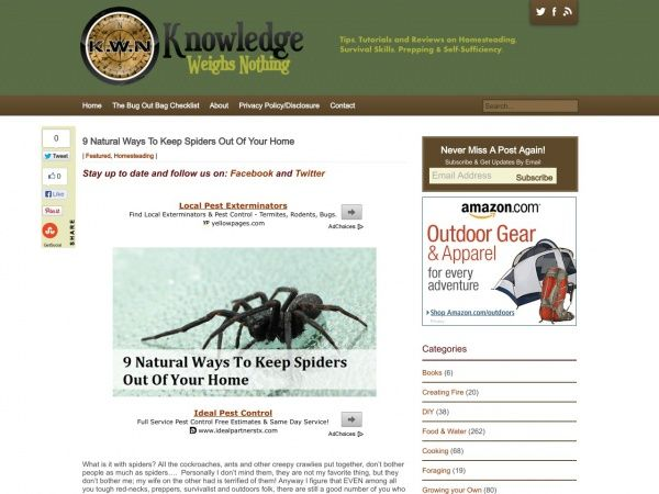 Natural Ways To Keep Spiders Out Of Your Home | Don't Bug Me ...