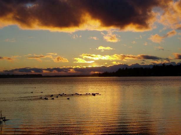 Wixom Lake<3