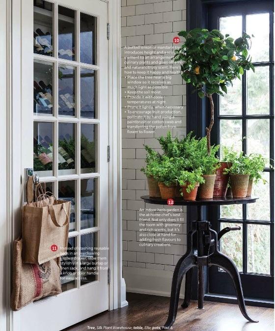 Indoor herb garden wine cellar Kitchen Pinterest
