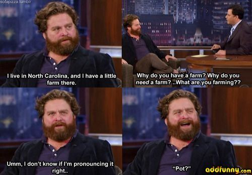 Zach Galifianakis #wegrow #marijuana #pot #weed #420