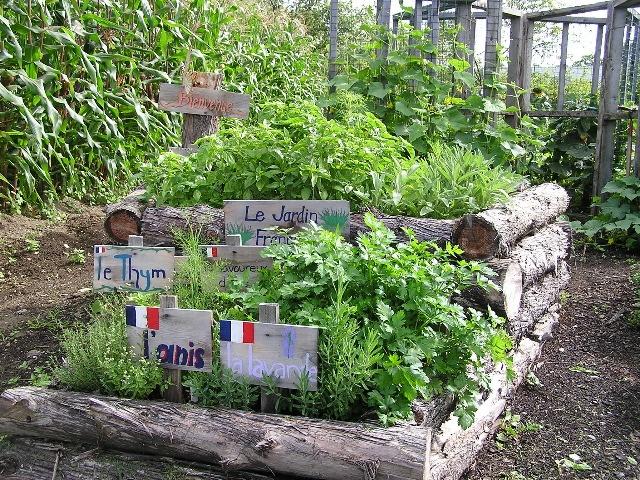 French herb garden Herb Gardening and Backyard Pinterest
