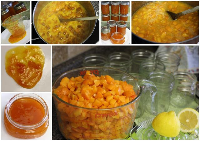Old Fashioned Apricot Jam Mennonite Girls Can Cook