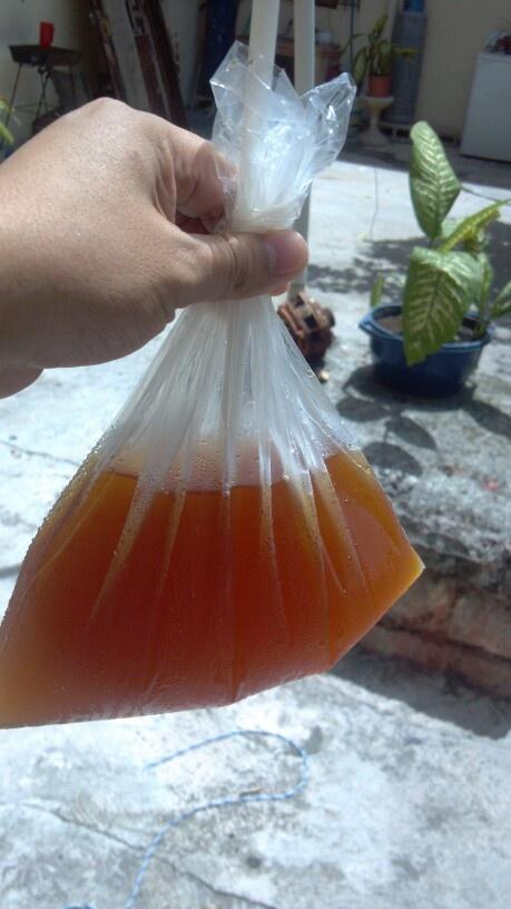 Tepache! Fav drink | Foods&Drinks | Pinterest