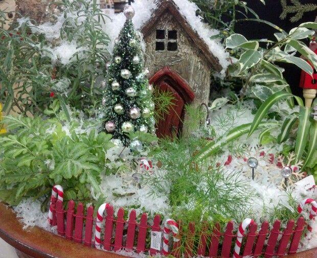 Christmas Fairy Gardens Ideas Photograph Winter Gard