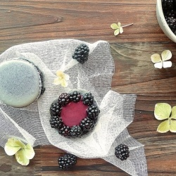 Blackberry macarons by emilieandlea | WHAT A SWEET-TOOTH FAIRY! | Pin ...