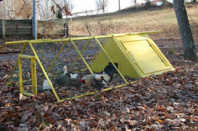portable duck pen with house down on the farm pinterest