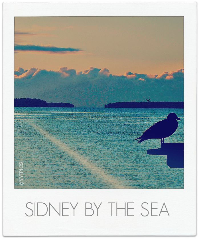 Sidney by the sea, Sidney BC Canada | Retro Poster Art | Pinterest